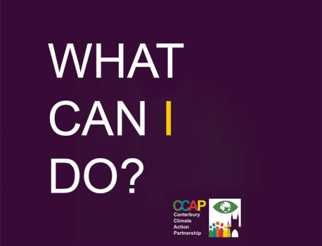 What can I do. Towards Zero Carbon Buildings