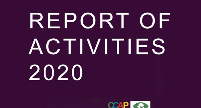 REPORT OF ACTIVITIES 2020