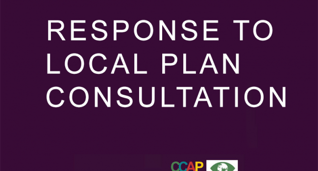 RESPONSE TO LOCAL PLAN CONSULTATION